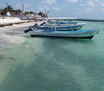 Cancun fly fishing cancun light tackle fishing charters for Puerto morelos fishing