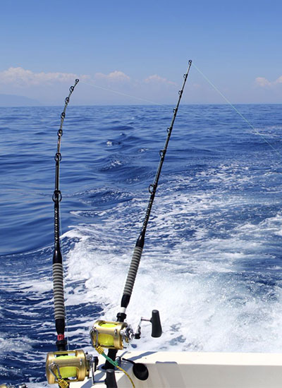 Cancun fly fishing cancun light tackle fishing charters for Deep sea fishing cancun